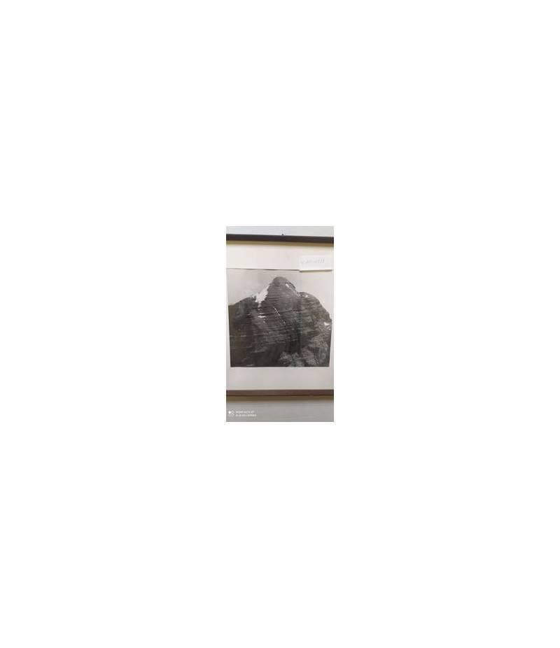Stampa Morgani 1971 45x40